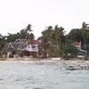 Balicasag Island Diving Services