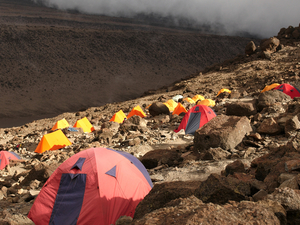 Lemosho Route - 9 Day Kilimanjaro Climb Photos