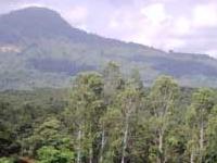Ba Ra Mountain