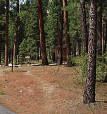 Barney's Campground