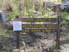 Barrk Walk
