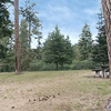 Battle Mountain Forest State Scenic Corridor
