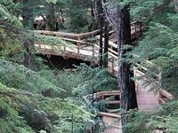 Beaver Falls Karst Trail