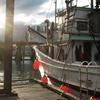 Bella Coola Docks