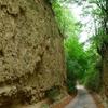 Benedek Canon Study Trail, Szekszárd