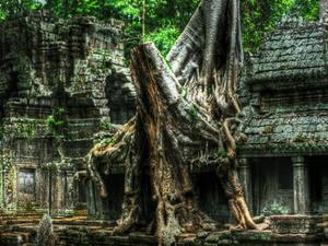 Beng Melea and Koh Ke Temple Photos