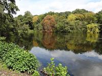 Bentley Priory Nature Reserve