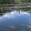 Berijam Lake