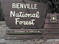 Bienville National Forest