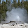 Bijou Geyser - Yellowstone - USA