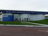 Blue Reef Aquarium in Tynemouth