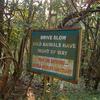 Bondla Signboard