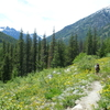 Bridge Creek Pacific Crest Trail
