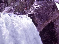 Brink of the Lower Falls