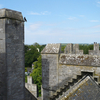 Bunratty Castle On Top