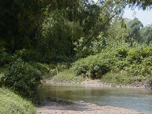 Burhi Gandak River