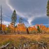 Burton Creek State Park