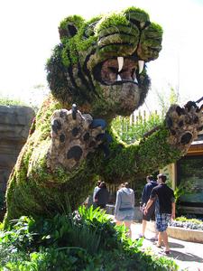 Busch Garden Tampa