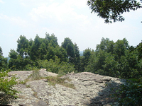 Buzzards Peak
