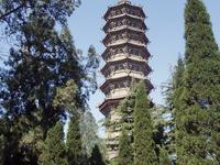 Pagoda of Bailin Temple