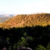 Bald Knoll Paunsaugunt Plateau