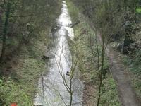 Barnsley Canal