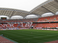 Tohoku Electric Power Big Swan Stadium