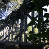 Derelict Bridge Over Bomaderry Creek