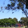 Bonython Park Picnic Adelaide