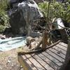 Broken Panda House