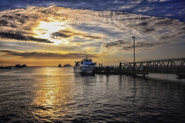 Private Honeymooners Sunset Dhow Cruise ( 2Hrs ) Photos