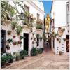 Calleja De Las Flores Alley - Cordoba