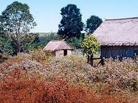 Ratanakiri