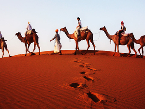 2 Nights / 3 Days Tour to Thar Desert Photos