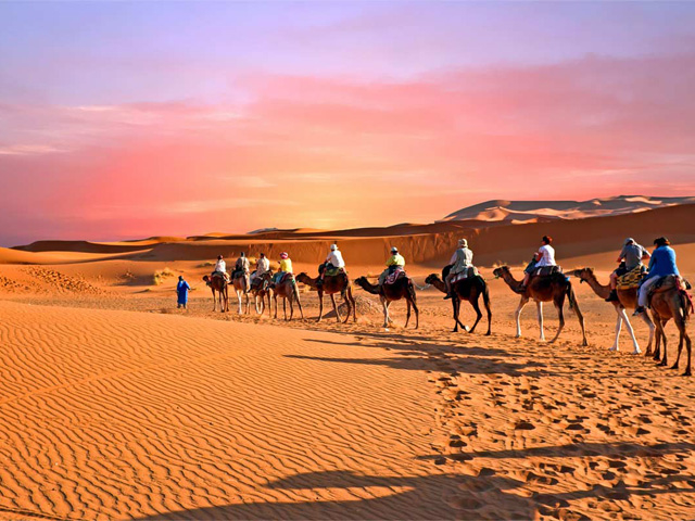 Camel Ride and Quad Bike in Marrakech Palmeraie Photos