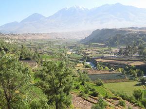 Campiñas de Arequipa Photos