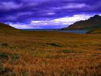 Cape Horn Biosphere Reserve