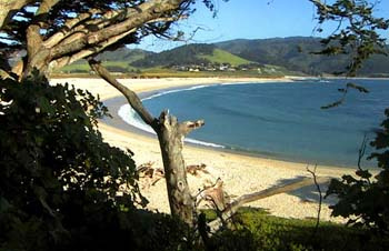 Carmel River California