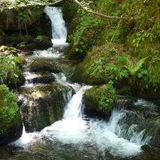 Cascada, La