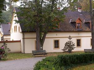Castle of Kamień Śląski
