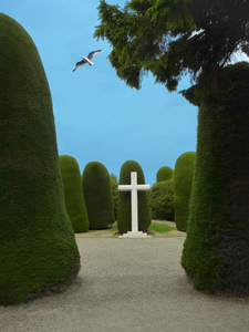 Cementery Of Punta Arenas