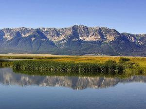 Centennial Mountains