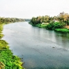 Chalakudy River From The Chalakudy Bridge