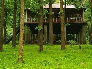 Chinnar Jungle Camping & Walking Safari Photos