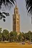 Clock Tower Mumbai University