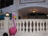 CocoWalk