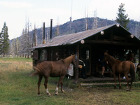 Cold Creek Patrol Cabin