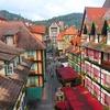 Bukit Tingii