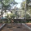 Community Science Center Ahmedabad