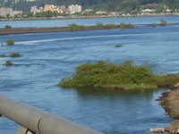 Biobio River